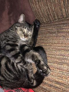 Who sleeps like this!?????????